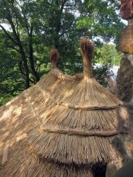 Rákosový hřeben
