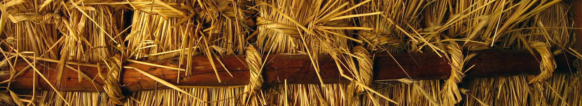 Archiv pro štítek: marocký štuk