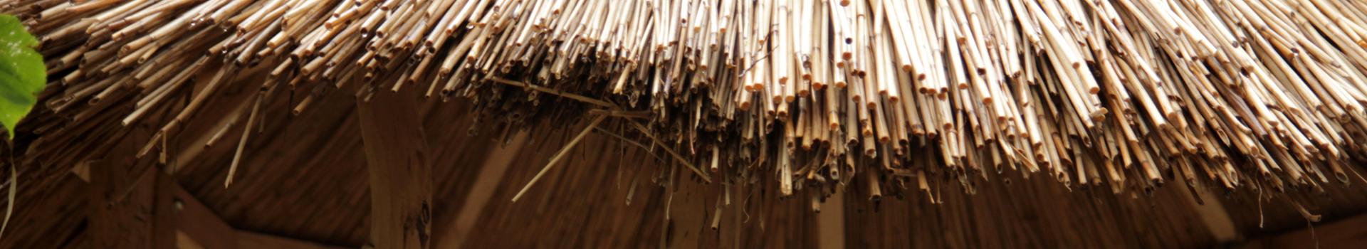 Rákosový altán
